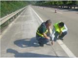 公路防水止水胶推荐自流平灌缝胶